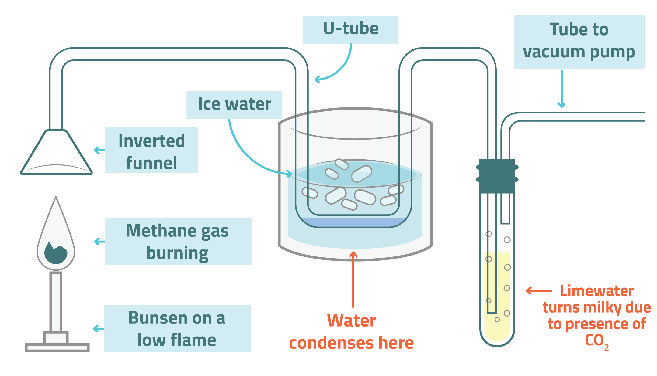 Combustion Diagram